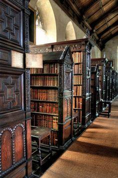Particolare della Biblioteca di St John's College - West Side