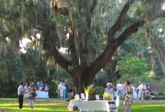 Enjoy a wine tasting in the beautiful Live Oak Allee at Brookgreen Gardens this Saturday. Guests will delight in tastes of 21 exceptional wines from South Africa and South America accompanied by food pairings. For tickets and details, visit http://www.visitmyrtlebeach.com/listings/Brookgreen-Gardens/369/.