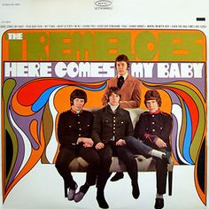 """""""Here Come My Baby"""" (1967, Epic) by The Tremeloes.  Their first LP."""