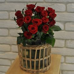 Trandafiri Roșii cu livrare în Moldova Planter Pots, Vase, Home Decor, Gates, Decoration Home, Room Decor, Jars, Vases, Interior Decorating