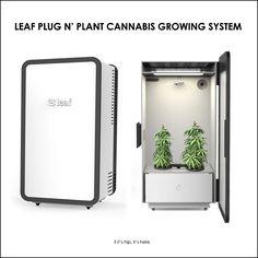 High tech plug n' plant cannabis home growing system #Leaf