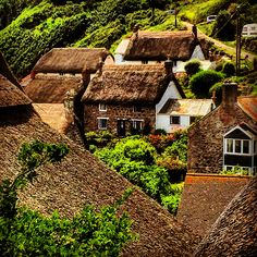 Cadgwith  Cornwall