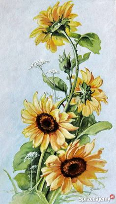 Sunflower Drawing, Watercolor Sunflower, Sunflower Art, Watercolor Flowers, Watercolor Paintings, Sunflower Paintings, Graffiti Kunst, Acrylic Painting Flowers, China Painting