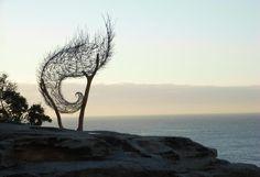 Windspiral II   Bronwyn Berman
