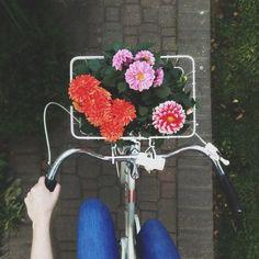 Bike into spring.Via @alostfeather on Instagram