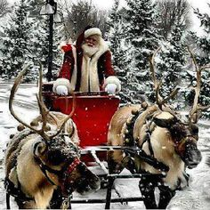 1000 images about santa amp his reindeer on pinterest