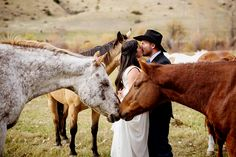 bride and groom with horses | equestrian  themed wedding ideas