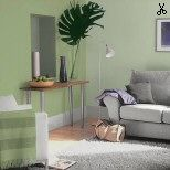Willow Tree Dulux Paint In A Room