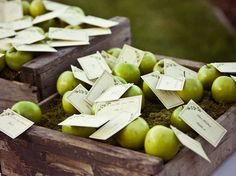 green apple seating cards.