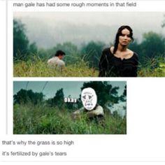 """""""It's fertilized by Gale's tears"""""""