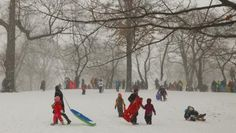 Buzzing: Watch a Stunning Time-Lapse of the Snowstorm Blanketing New Yorks Central Park New York Central, Central Park, Mother Knows Best, New York S, Snow, Blanket, Children, Outdoor