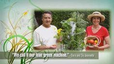 vertical garden aeroponics - YouTube