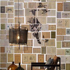 Ekaterina Panikanova   Biblioteca Wallpaper  EKA-03