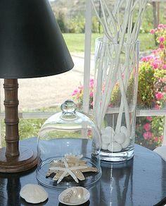 Brabourne Farm: Shells
