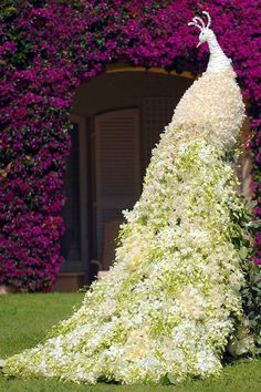 awesome peacock topiary #topiary