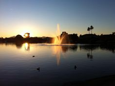Sunset by the lake at Portofino Condominiums. www.Facebook.com/Ahwatukee365  #Ahwatukee
