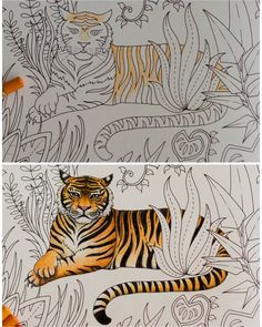🐯 before and after ☺ #magicaljungle #johannabasford #coloring #coloringbook…