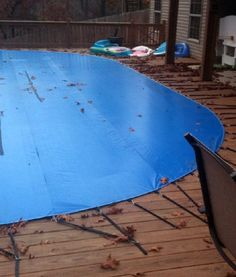 170 Pools Ideas Backyard Pool In Ground Pools Pool Landscaping