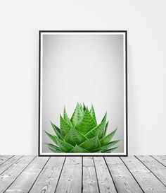 Succulent Print, Aloe Vera Wall Art, Green Poster, Succulent Photography. Art Prints for the walls of your home by Little Ink Empire