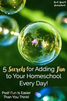Want to add fun to your homeschool but feel overwhelmed at where to start? Read about our homeschool adventures & my 5 secrets to adding fun to your homeschool every day! Includes video with more ideas & tips.