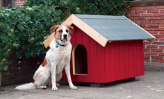 Free instructions on how to make beatiful DIy dog house!