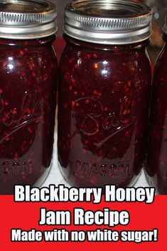 Homemade Blackberry Honey Jam Recipe With No White Sugar. (( Jeannie note: I added 3 tlb pectin to set better and due to super tart berries increased honey to 2 cups)) Sugar Free Jam, Blackberry Recipes, Strawberry Honey Jam Recipe, Blackberry Jam No Pectin, Blackberry Bush, Freezer Jam, Home Canning, Canning Tips, Canning Labels