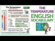 How Often? - Adverbs of Definite Frequency - YouTube