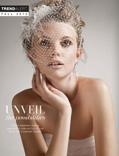 Headpiece Style H8118/Russian Tulle Blusher with Scattered Crystals Style V942 - David's Bridal Collection