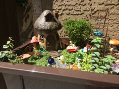Wallace Family Gnome Garden