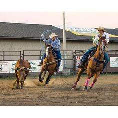 #teamroping at the @malibu_dude_ranch #rodeo #cowboy #country #eastcoast #horse #canon #canonusa #TeamCanon #500px