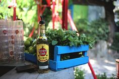 La célèbre marque de rhum Havana Club s'installe à Paris pour initier à l'art du Mojito cubain. #streetmarketing #marketing Street Marketing, Mojito, Little Havana