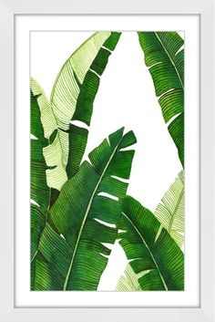 Marmont Hill 36 Inch x 24 Inch Banana 1 Framed Giclée Art P White Home Decor Wall Decor Paintings and Prints Plant Painting, Plant Art, Watercolor Leaves, Watercolor Paintings, Leaf Paintings, Art Tropical, Art Et Nature, Painted Leaves, Leaf Art