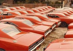 Dukes of Hazzard, movie destroyed over 40 classic Dodge Chargers 😞 Volkswagen, General Lee Car, Dodge Muscle Cars, 1969 Dodge Charger, Ford Classic Cars, Abandoned Cars, Stance Nation, Us Cars, American Muscle Cars