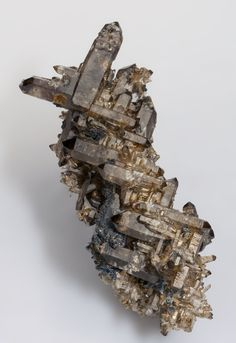A novelty at the Ste. Marie-aux-Mines 2015 Show. Excellent example in which the two directions of the smoky Quartz crystals have been controlled epitactically by the feldspar upon which they grew. They resemble multiple Japan law twins but they are not twins. This phenomenon is seen on similar specimens from the Erongo Mountains, Namibia, as described by John White in an article in Rocks & Minerals, vol. 87, Sept./Oct. 2012, pp. 459-462, but this one has a related combo of small species…