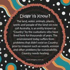 Aboriginal Education, Indigenous Education, Sustainable Environment, Sustainability, Interactive Activities, Craft Activities, Naidoc Week, Australian Curriculum, Professional Development