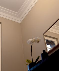 Like modern crown moulding- simple and clean