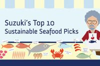Our Top 10 sustainable seafood guide helps you find the best sustainable seafood available in your grocery store. This seafood is harvested in a way that protects surrounding sea creatures and the ecosystems they depend on. Do You Really, What You Can Do, Nutrition Education, Health And Nutrition, Sustainable Seafood, Oceans Of The World, Fun At Work, Teaching Tools, My Favorite Food