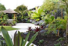 #tropical #landscaping