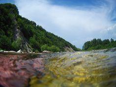 Carpathians. Ukraine