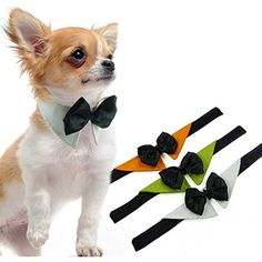 UHeng 3 PCS Pet Dog Cat Bowknot Collar Adjustable Bow Tie *** See this great product. (This is an affiliate link) #Dogs