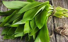 What the Heck are Ramps? - Page 3 of 3 - Farmers' Almanac Wild Garlic Plant, Vegetable Garden, Garden Plants, Wild Ramps, Wild Onions, Permaculture, Farmers Almanac, What The Heck, Caraway Seeds