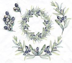 Watercolor botanic olive branch ~ Illustrations on Creative Market