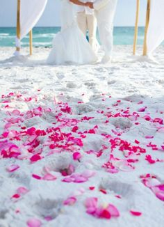 pink rose petals for Destin beach wedding gFlorida by Princess Wedding co