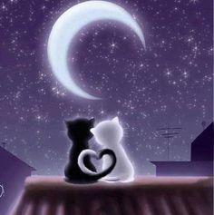 ..Love Cat.