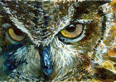 Owl Eyes Paintings ... Watercolors of Owl...
