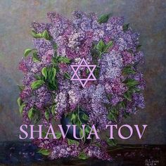 Shavua Tov = a good week, usually said on Saturday night after the Sabbath ends