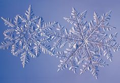 Nature's Great Piece of Art-Slash-Geometry Lesson: The Snowflake   Earth Science   DISCOVER Magazine