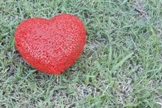 Google Image Result for http://us.123rf.com/400wm/400/400/olovedog/olovedog1109/olovedog110900007/10458357-plastic-red-heart-shape-on-nature-green-grass-background.jpg