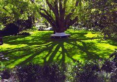 Garden Milton Park, Garden Seating, Golf Courses, To Go, Places, Photography, Shadows, Image, Happiness