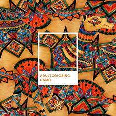 Orange camel adult coloring illustration | free image by rawpixel.com Purple Elephant, Pink Owl, Birds Of America, John James Audubon, Mosaic Patterns, Pattern Illustration, Free Coloring Pages, Free Illustrations, Camel